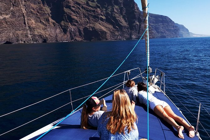 Los Gigantes Whale Watching Private Charter 3 Hours