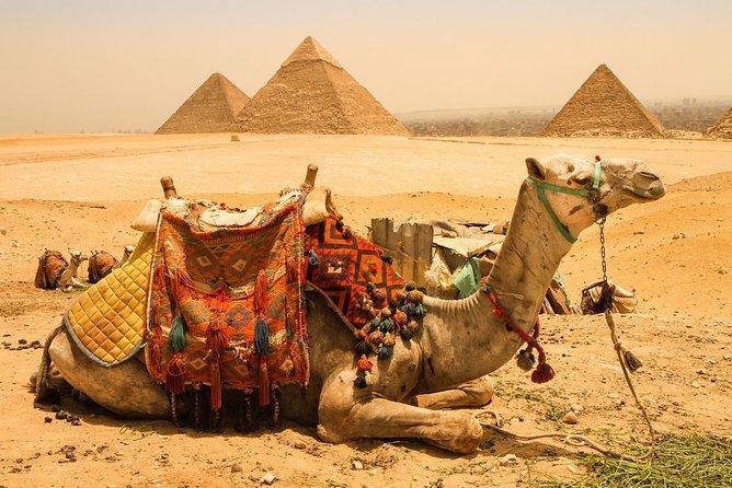 Cairo : 3-Days Guided Tours to Cairo , Giza and Alexandria