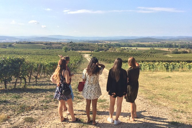 Half day wine tour. Shared tour from Carcassonne.