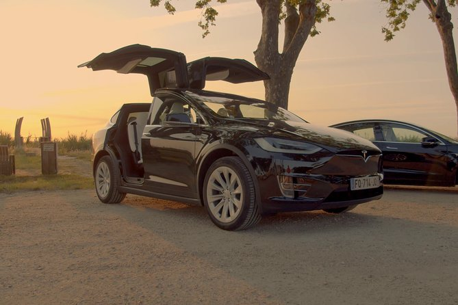 Luxurious full day wine tour in a Tesla (8h)