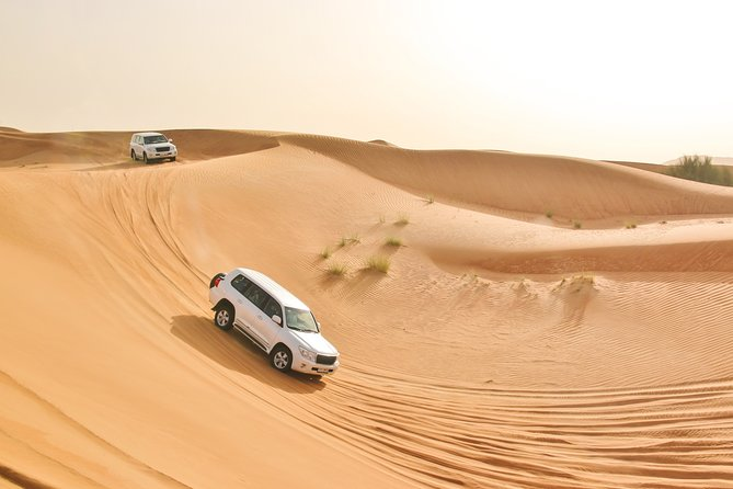 Premium Desert Safari With BBQ Dinner And Alcohol Flow - Premium Spirit 2 Hrs