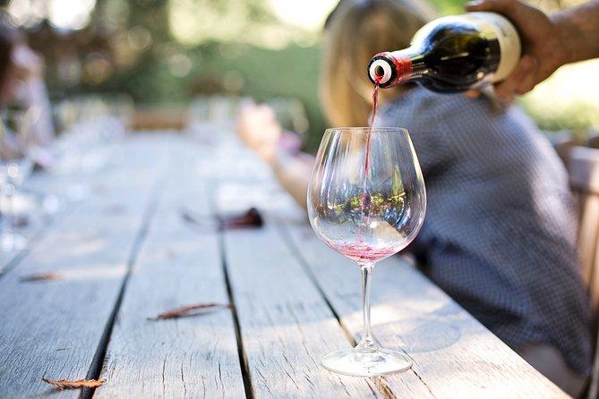 Private Tour: Big 5 Inverdoorn Private Game Reserve & Wine Tasting