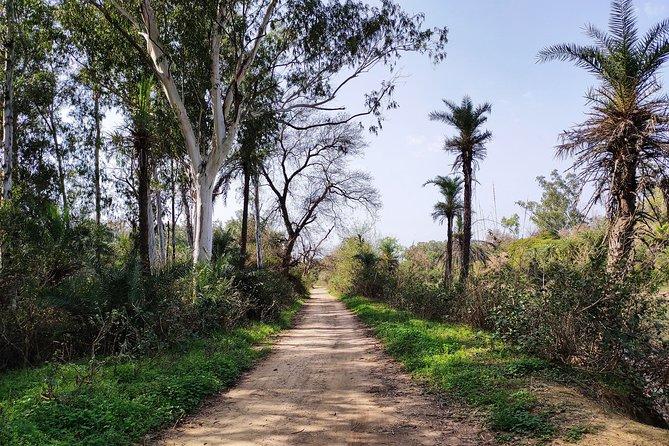 The best of Ludhiana walking tour