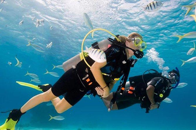 Scuba Dive Cabo Certified