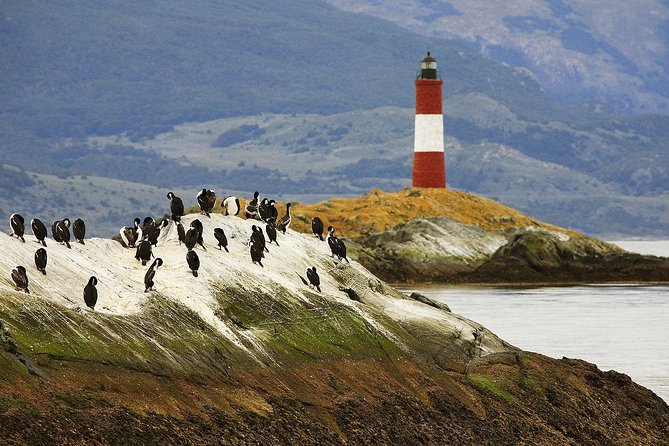 Beagle Channel On Yacht Experience