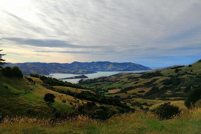 5-Day Christchurch & Canterbury Explorer Tour For Locals