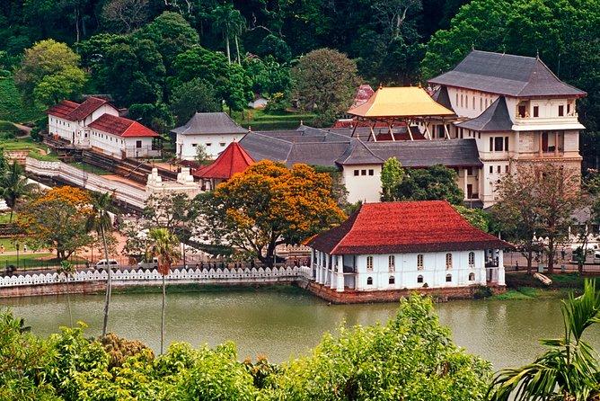 Kandy City Tour from Mount Lavinia