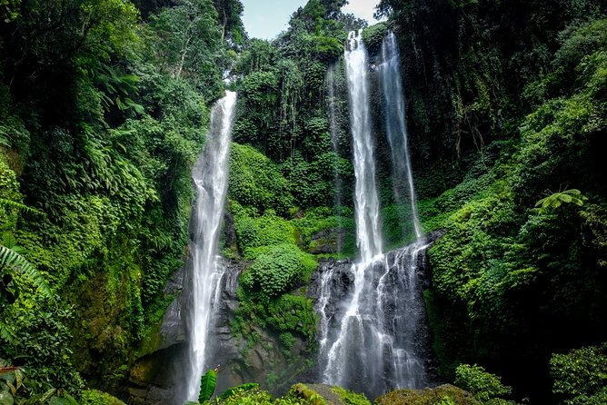 Private Tour Funtastic Sekumpul Waterfall-Bratan Temple-Jatiluwih Rice Terrace