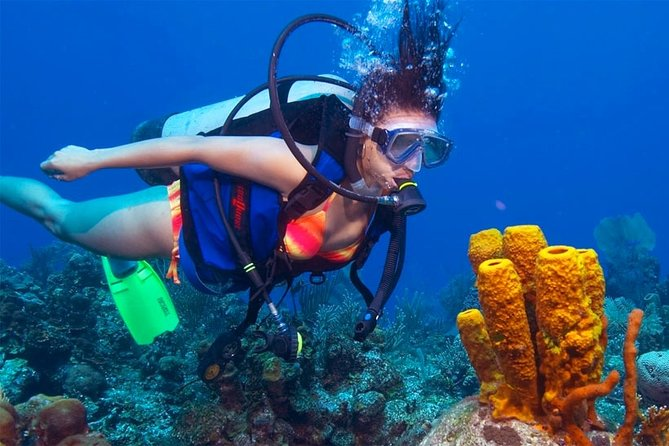 Adventure Dive Package in Mount Lavinia