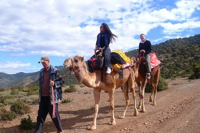 Day Trip to Atlas Mountains & 3 Valleys from Marrakech With Lunch and Camel Ride