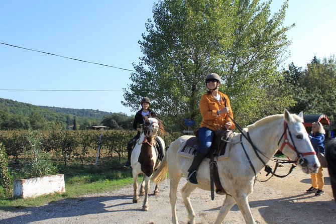 Horse riding in the vineyards