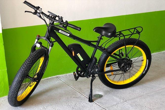 Electric Bikes Per Hour
