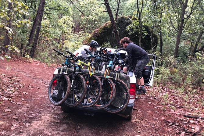 Half Day Tour to La Primavera Forest.
