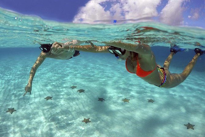 Complete Snorkeling tour to El Cielo at Cozumel from Cancun and Riviera Maya