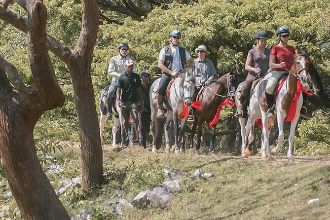 Horse riding tour (7 Days)