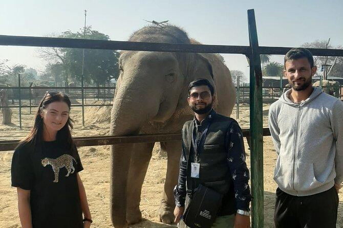 Agra Overnight Chambal Safari Tour