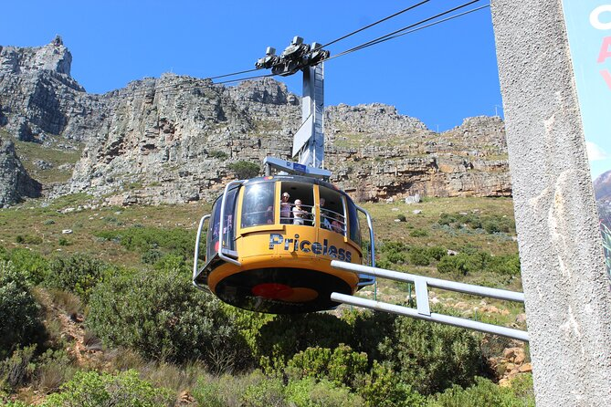 Full-Day Tour to Robben Island Museum and Table Mountain National Park