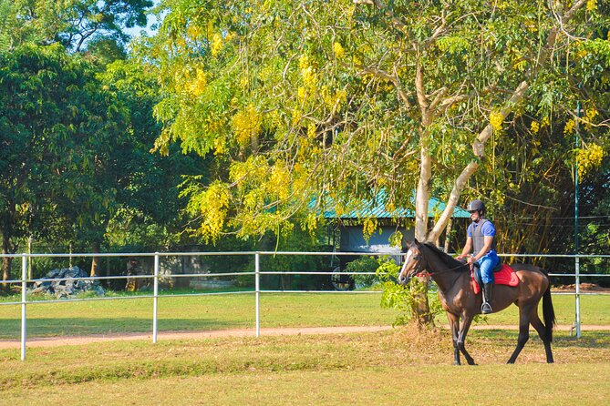 Horse Riding for Professionals in Dambulla