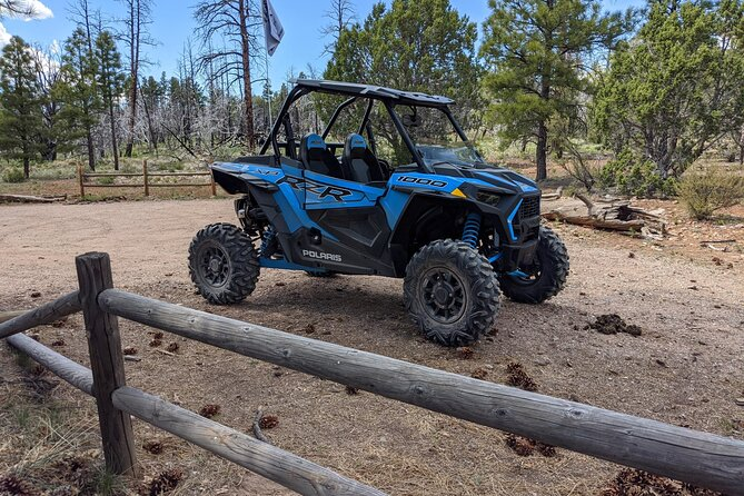UTV Rental to Experience the Grand Canyon Area