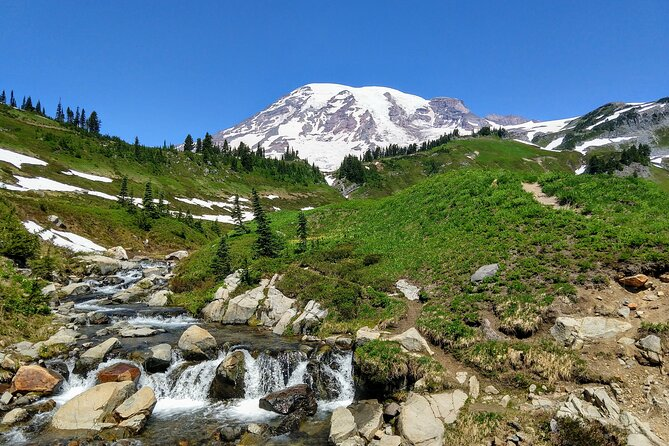 Mount Rainier National Park - Private Luxury Day Tour with Lunch