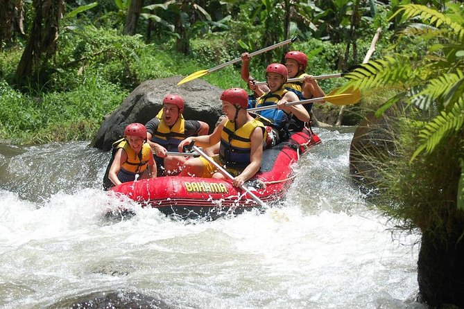 Small-Group White Water Rafting in Bali