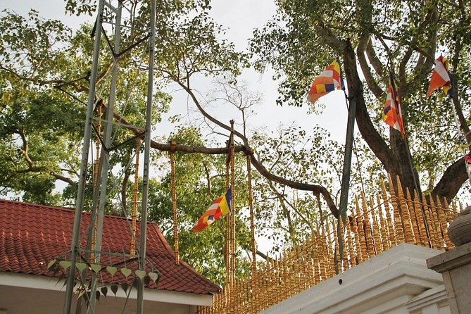 Ancient City of Anuradhapura - Day Tour