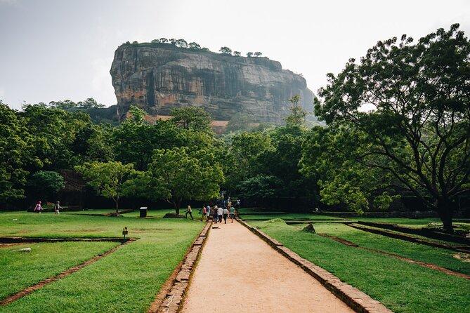 Sigiriya Rock and Dambulla Cave Temple Day Tour