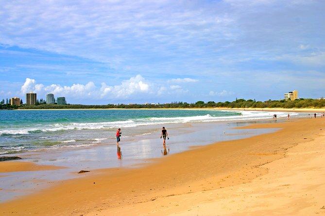 Sunshine Coast Tours from Brisbane