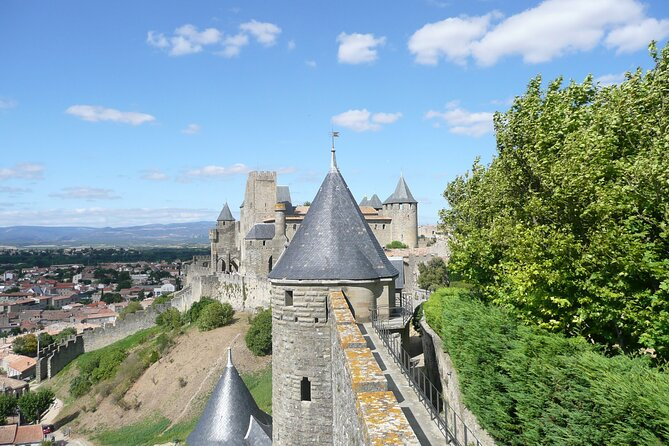 Day to the Cité de Carcassonne and wine tasting. Shared tour from Carcassonne