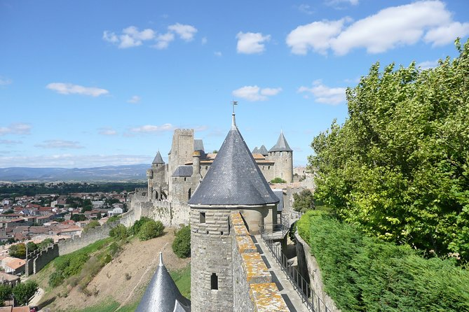 Day tour : Cité de Carcassonne and wine tasting. private tour from Carcassonne.