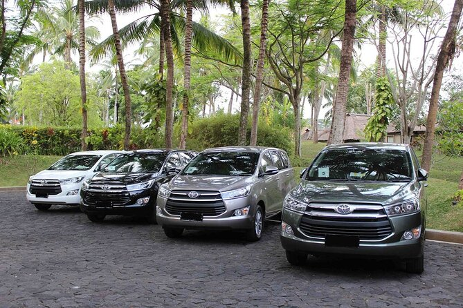Your Bali Private Driver Full-Day Tour Ubud