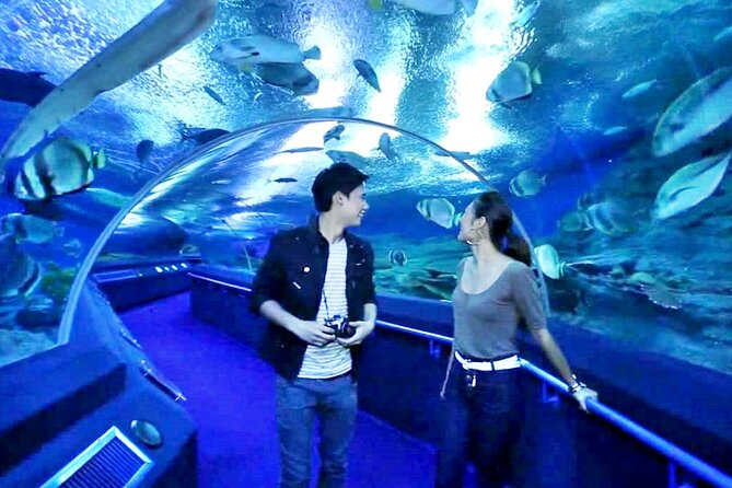Discover Pattaya Underwater World with FREE Hotel Pickup