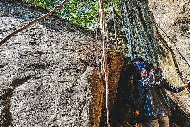 Hike to Danigala Circular Rock from Aaralaganwila