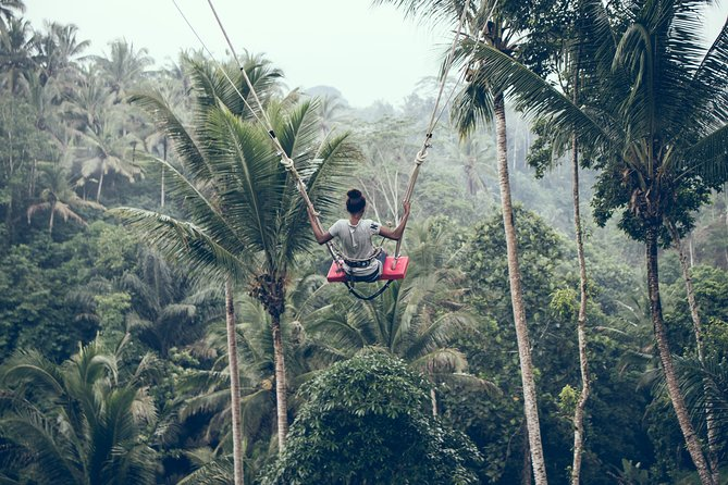 Best of Ubud with Jungle Swing Tour