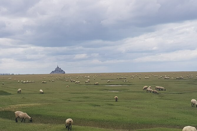 Day trip with local driver to Mont Saint-Michel from Rennes