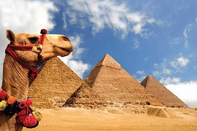 Day Tour from Cairo: Giza Pyramids, Sphinx, Memphis, and Saqqara