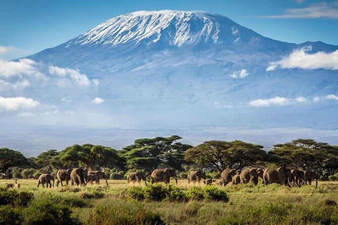 Kilimanjaro Mountain view