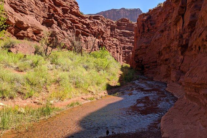 Moab's Best Kept Secret: Mini Narrows Cool Summer Hike