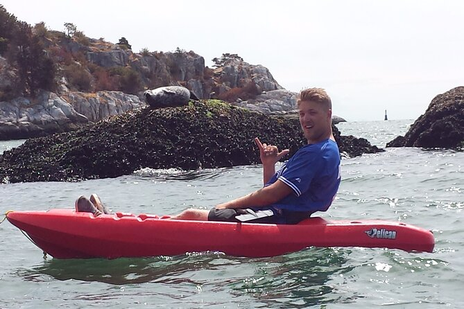 Kayak, SUP, and Seals! Guided kayak or SUP tour off our 40' boat!