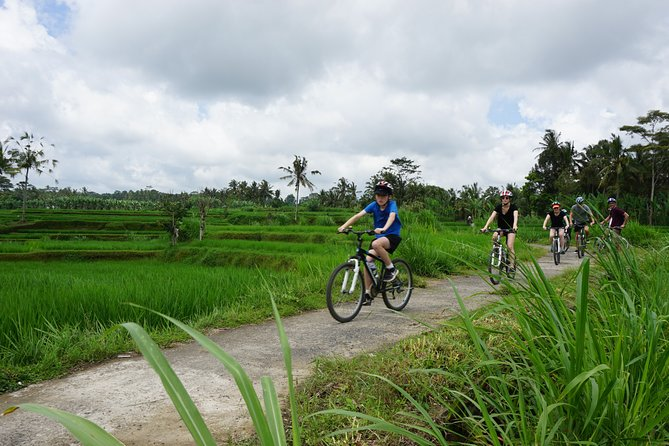 Full Day Kintamani Cultural and Nature Cycling Tour