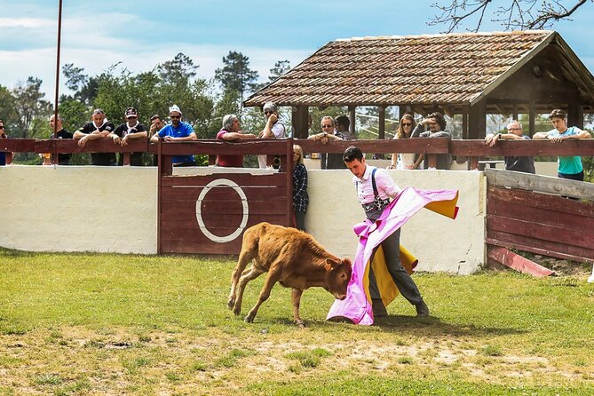 Discover traditional games! (bus excursion)