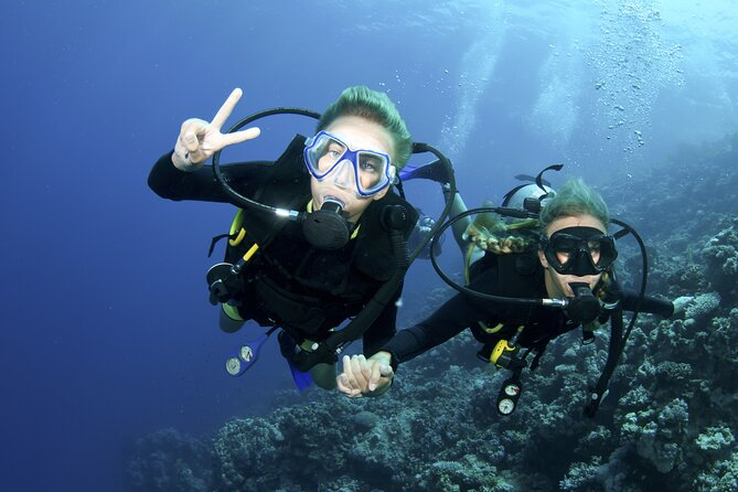 PADI Discover Scuba Diving course in Ameds Coral Paradise