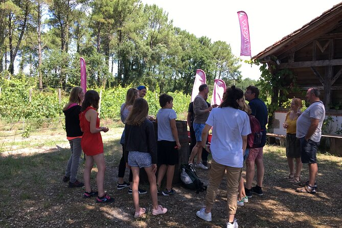 Immersion in the heart of the Landes! (Bus excursion)