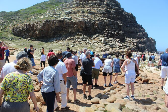 Full-Day Private Tour to Cape Point Penguins from Cape Town