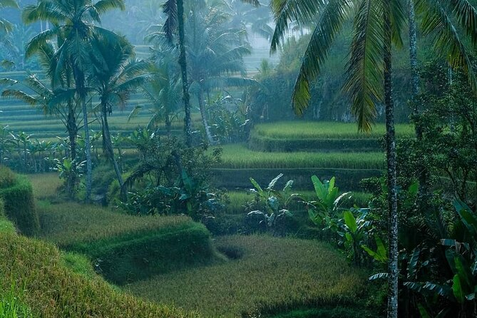 Best of Ubud: Private All-Inclusive Tour with Jungle Swing