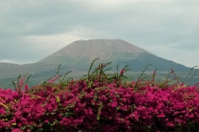 Pompeii Skip-The-Line and Mt Vesuvius with Lunch&WineTasting from Rome