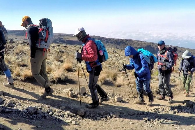8 Days Mt Kilimanjaro Climb - Lemosho Route