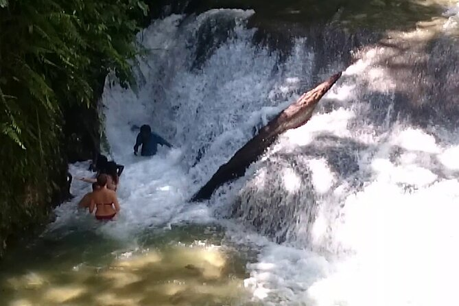 Private Benta River Excursion from Montego Bay