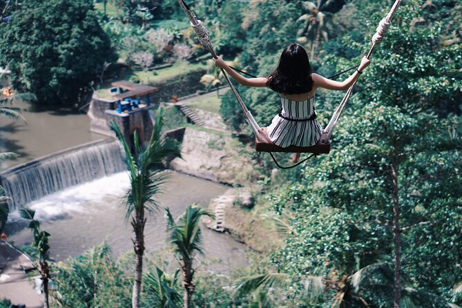Higlight Ubud Tour and jungle swing
