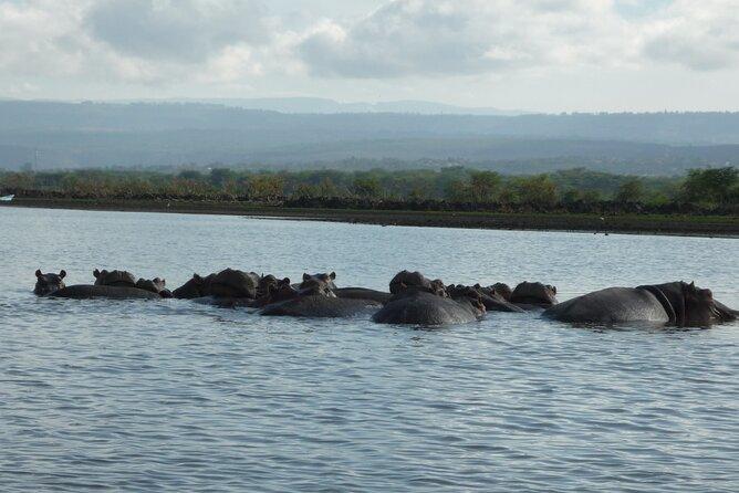 5 Days Safari to Amboseli N/P, Lake Naivasha, Maasai Mara N/R.